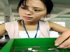 工厂里真的有爱情吗?工厂里的女孩适合结婚吗?