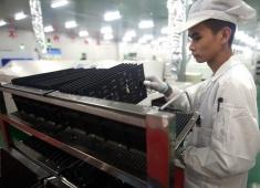 电子厂一天工作几个小时?