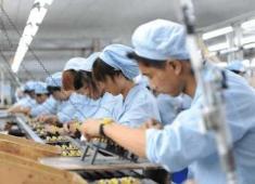 电子厂现在想要招年轻工人,必须要满足这些条件