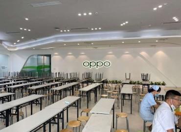 东莞OPPO正式工
